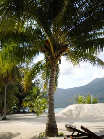 îles Thaïlande Top 10